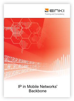 IP in Mobile Networks' Backbone